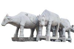 水牛城雕象 免版税图库摄影