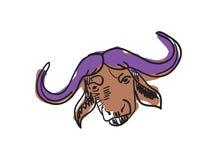 水牛城顶头手拉的被隔绝的象 库存照片