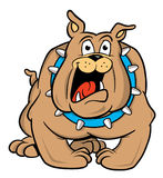 牛头犬动画片例证 图库摄影
