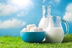 牛奶和酸奶干酪在草甸和蓝天背景 免版税图库摄影