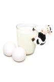 牛奶店健康产品 免版税库存照片