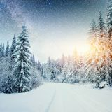 牛奶店星舰奇航记在冬天森林 剧烈和美丽如画的场面 预期假日 免版税库存图片