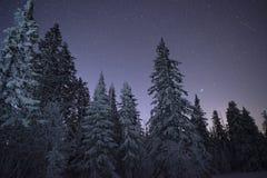牛奶店星舰奇航记在冬天森林 库存图片