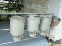 牛奶罐头 免版税库存图片