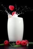 牛奶莓飞溅 免版税图库摄影