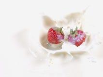 牛奶飞溅草莓 库存图片