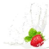 牛奶飞溅草莓 免版税图库摄影