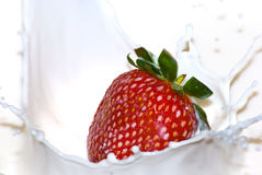 牛奶飞溅草莓 库存照片
