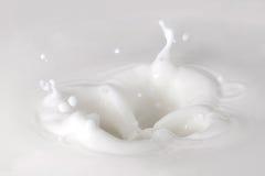 牛奶飞溅 免版税库存照片