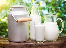 牛奶以各种各样的盘。 免版税库存图片
