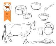 牛奶 设置乳制品 库存图片