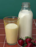 牛奶strawberrys 免版税图库摄影