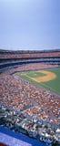 牛油树体育场, NY Mets卷SF巨人,纽约 SF巨人,纽约 免版税库存图片