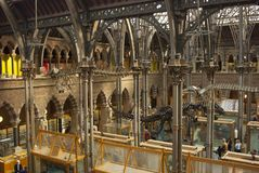 牛津, U K, 2018年10月13日-牛津自然历史博物馆 库存照片