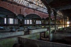 牛的被放弃的牛栏设备在德国屠宰场Rosenau 免版税库存图片