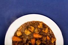 牛肉和红葡萄酒砂锅用烘烤土豆红萝卜和软糊状食物 免版税库存照片