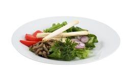 牛肉沙拉和新鲜蔬菜 免版税库存图片