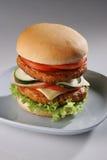 牛肉burger02 免版税图库摄影