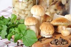 牛肝菌蕈类和香料 免版税库存图片
