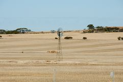 牛驻地风车 库存照片