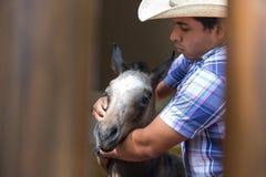 牛仔与一匹幼小马一起使用 库存照片