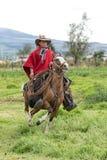 牛仔在厄瓜多尔骑乘马安地斯  图库摄影