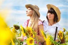 牛仔帽的美丽的女孩在向日葵领域 库存图片