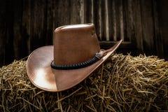 牛仔帽马乘驾使用 免版税库存图片