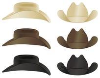 牛仔帽马乘驾使用 库存照片