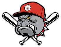 牛头犬作为棒球吉祥人 免版税图库摄影