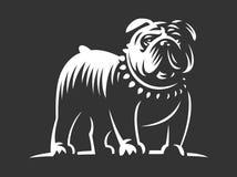 牛头犬在黑暗的背景的传染媒介例证 向量例证