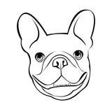 牛头犬狗动物法国传染媒介例证宠物品种逗人喜爱的图画 向量例证