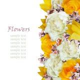 牡丹、郁金香、玫瑰和丁香花渐近 库存图片