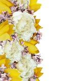 牡丹、郁金香和丁香花边缘 免版税库存图片