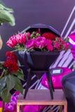 牡丹、郁金香和玫瑰装饰花束  免版税库存图片