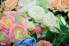 牡丹和玫瑰 特写镜头 免版税库存图片