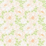 牡丹开花有绿色叶子无缝的样式背景 免版税库存照片
