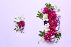 牡丹的欢乐花卉构成在桃红色和紫色背景的 库存照片