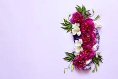 牡丹的欢乐花卉构成在桃红色和紫色背景的 免版税库存照片