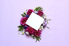 牡丹的欢乐花卉构成在桃红色和紫色背景的 库存图片