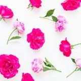 牡丹的花卉构成开花,玫瑰和叶子在白色背景 平的位置,顶视图 花卉生活方式样式 免版税图库摄影