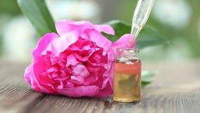 牡丹花精华在桌上的在美丽的玻璃瓶