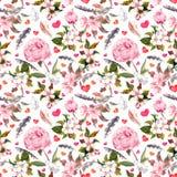 牡丹花,佐仓,羽毛 无缝花卉的模式 水彩 免版税库存照片