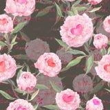 牡丹花,心脏 无缝花卉的模式 水彩 库存照片