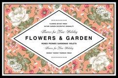 牡丹,春黄菊,野花框架 免版税库存照片