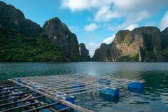 牡蛎农场在下龙湾,越南 免版税库存图片