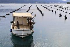 牡蛎农场在克罗地亚 免版税库存图片