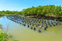 牡蛎农场 库存图片