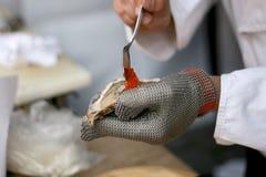 牡蛎准备 免版税库存照片