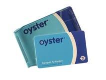 牡蛎卡片 免版税库存图片